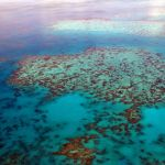 Holiday, Bucketlist, Urlaubsziel, Great Barrier Reef